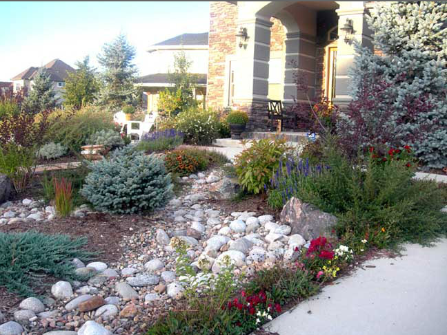 Xeriscape Small Backyard : Xeriscape Front Yard Austin  Small Yard Landscaping Ideas